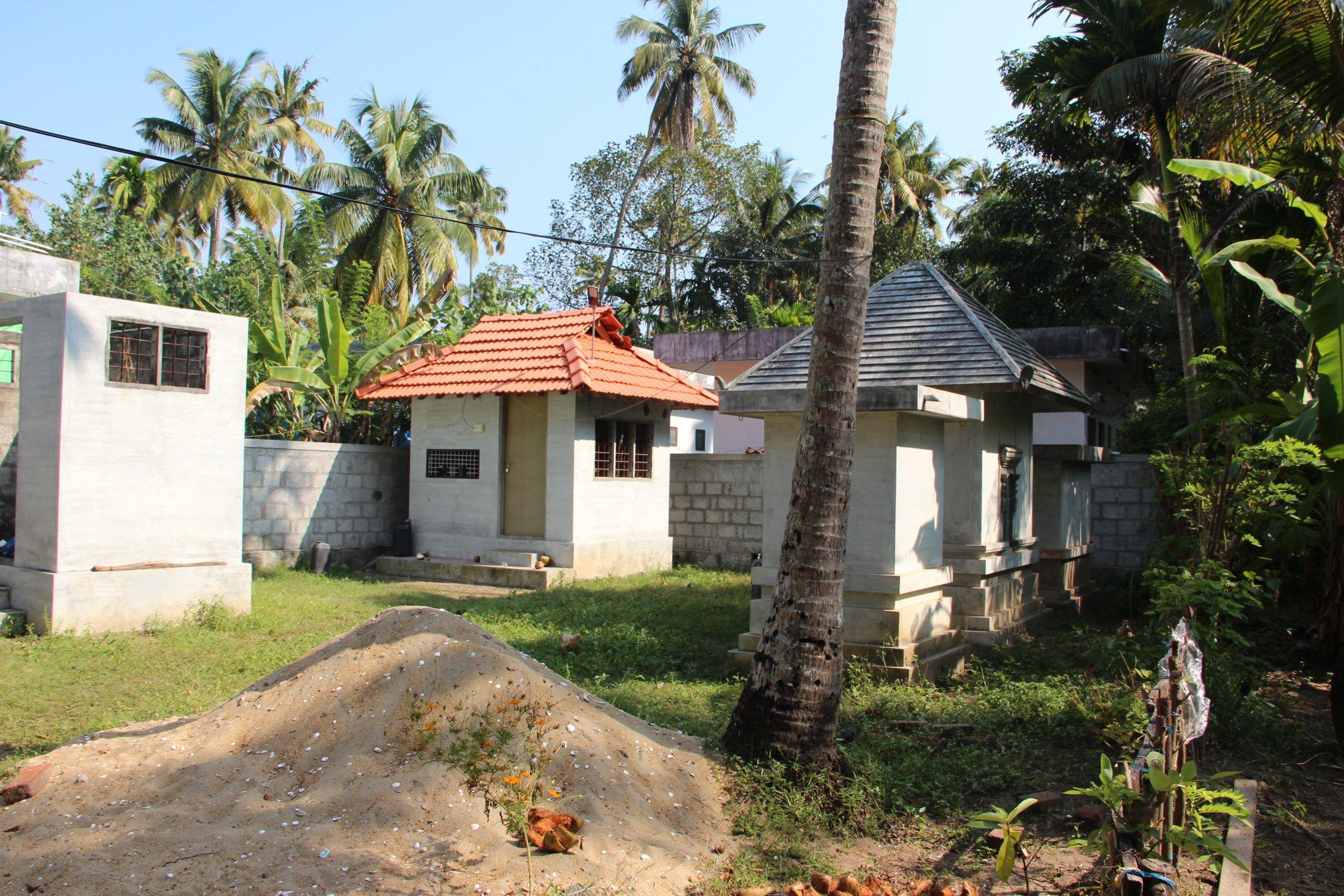 A Sacred Grove in Azhikode, Kerala
