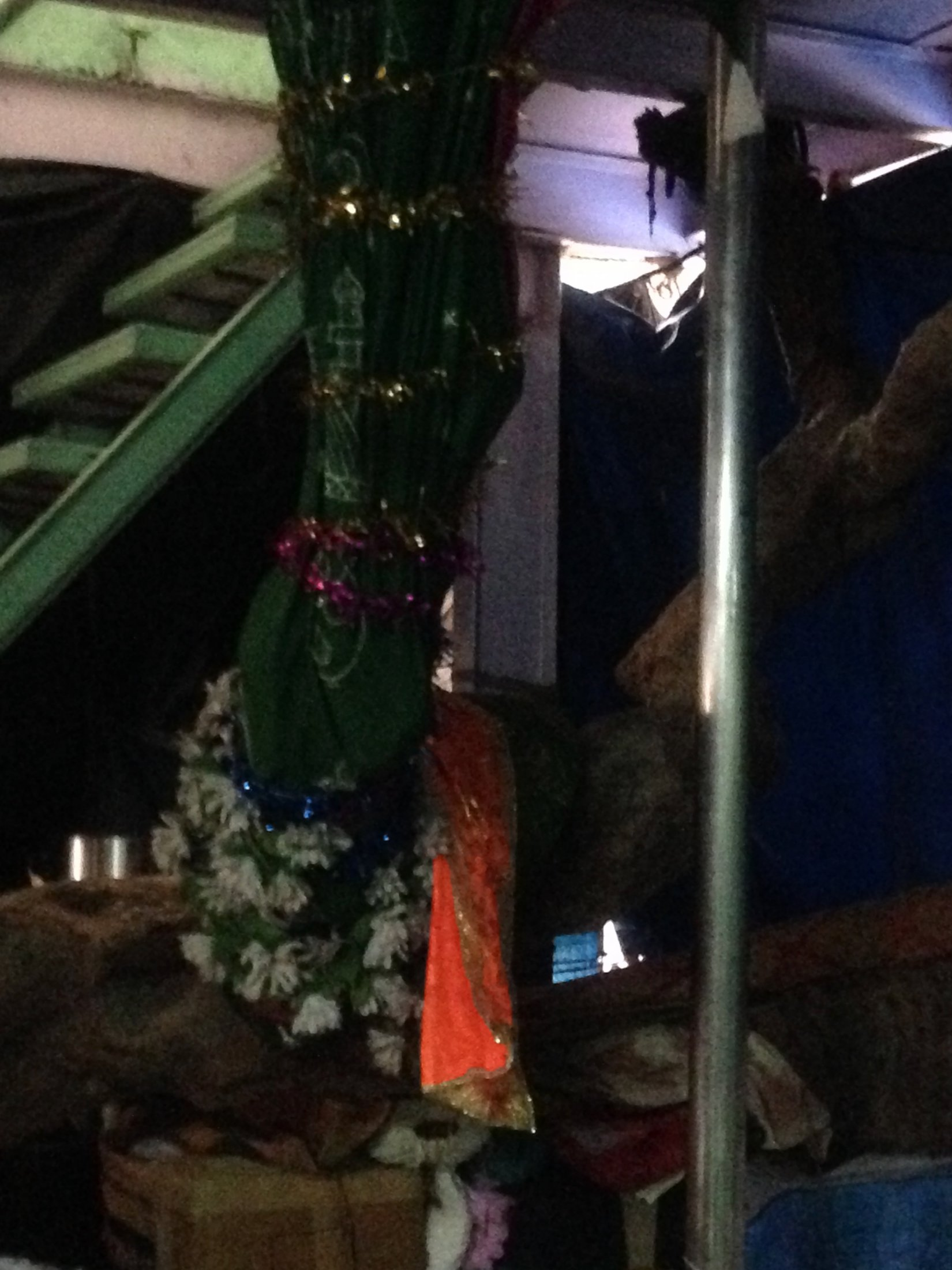 Sacred Tree is the Kamli Shah Dargah