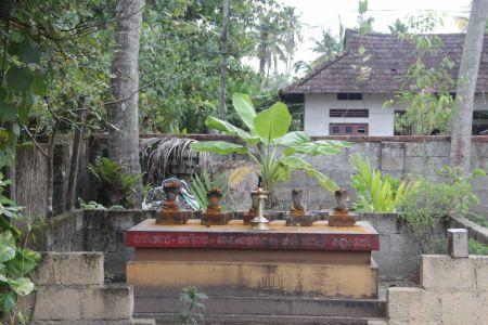 Sarpa Kaavu