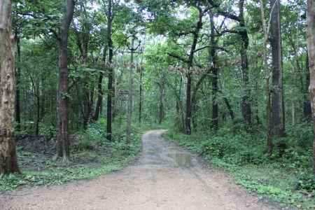Manchikeri, Karnataka