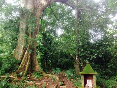 Kappiri Shrine at Corgao