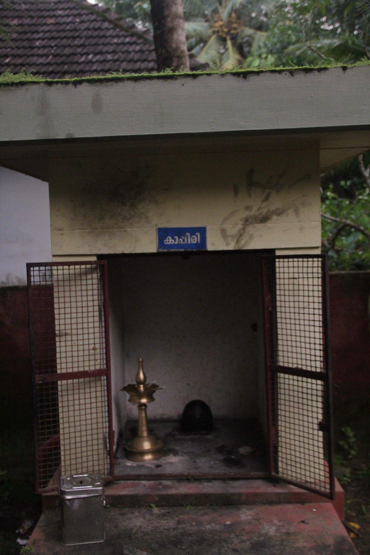 Kappiri Idol in a Kaavu