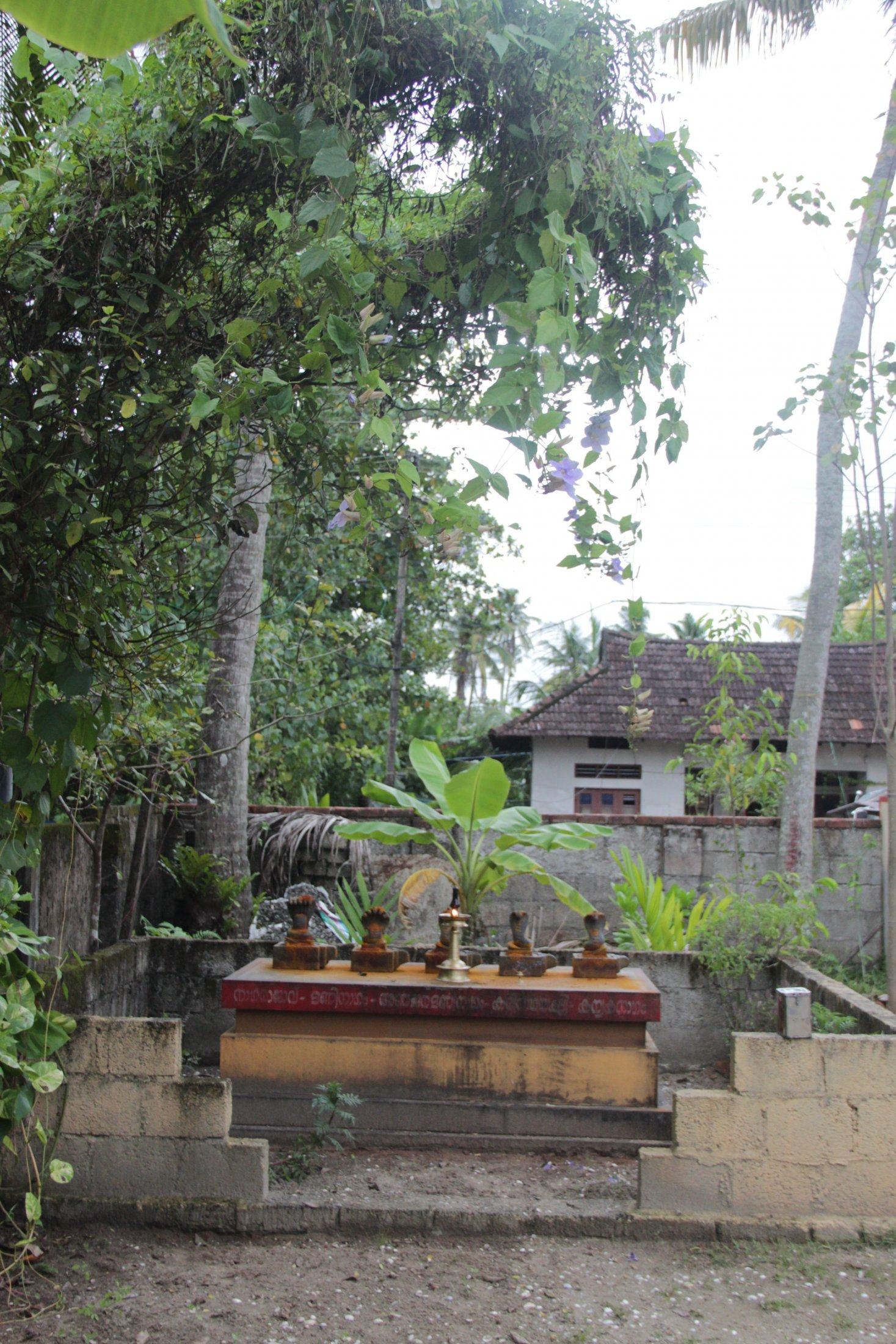 Sacred Grove with Shrines for Snake Gods