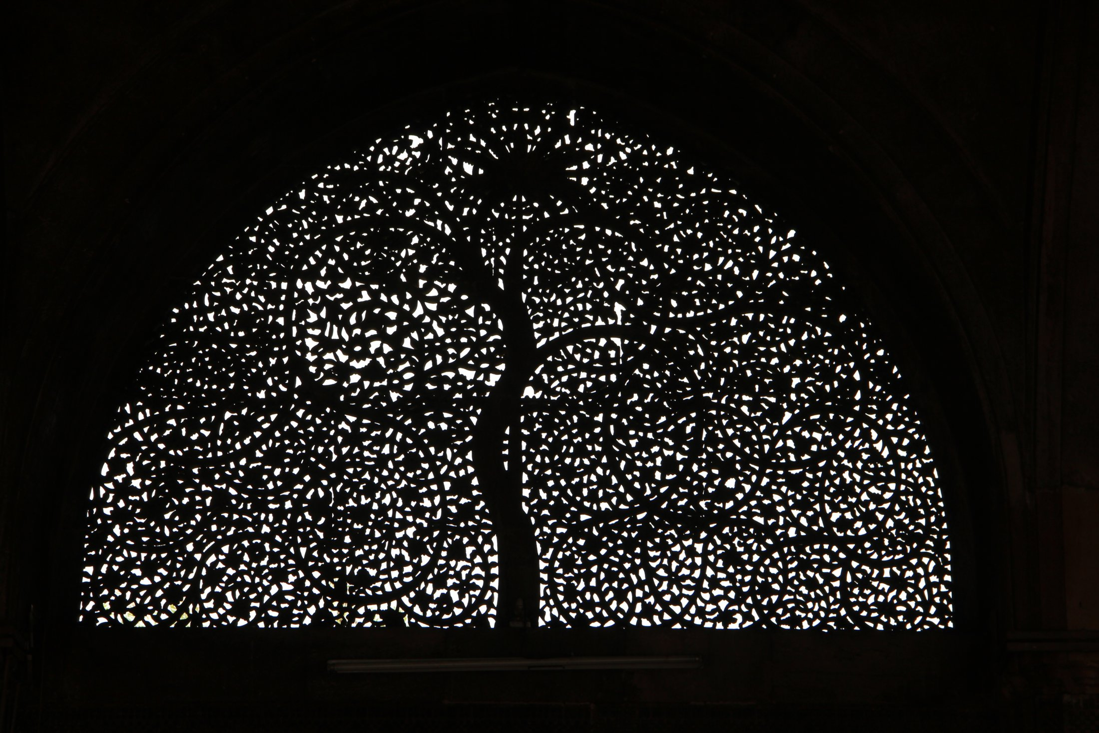 Tree of Life, Sidi Sayed Mosque