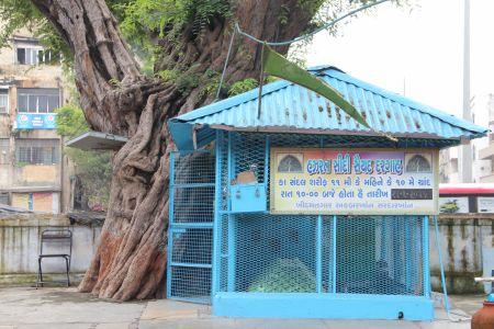 Sidi Sayed's Dargah